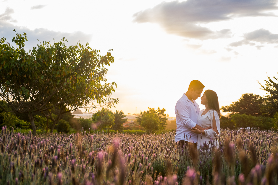 CAPA ensaio fotografico pre casamento holambra bloemen aprk leonardo laprano fotografia casamentos e familia ensao pre casamento em holambra-1